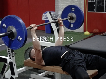 Bench Press: Understanding the Path