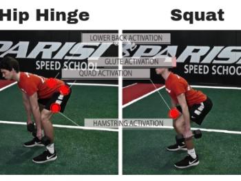 Understanding Hip Hinge & Squat Patterns